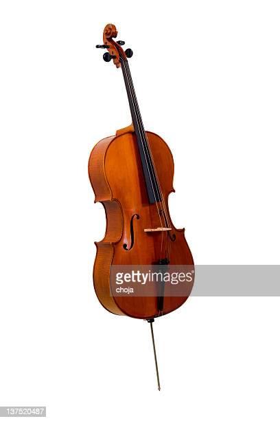 Old cello on white background