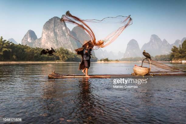 old chinese fisherman throwing net, china - paisajes de china fotografías e imágenes de stock