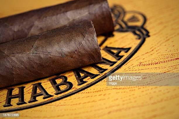 Old cigar box mit Zigarren