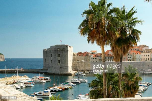 Old City Harbor with plam trees, Dubrovnik, Croatia