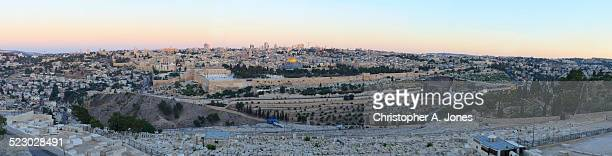 old city jerusalem panorama - garden of gethsemane stock pictures, royalty-free photos & images