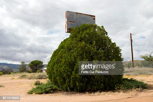 Old commercial sign placard behind a tree at Valentine, in Mohave County, Arizona, United States