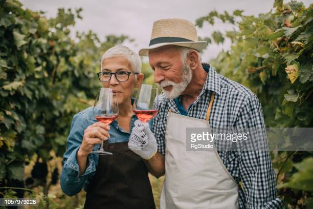 old couple drinking rose wine - light effect stock pictures, royalty-free photos & images