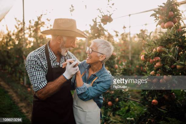 Old couple hugging in the garden