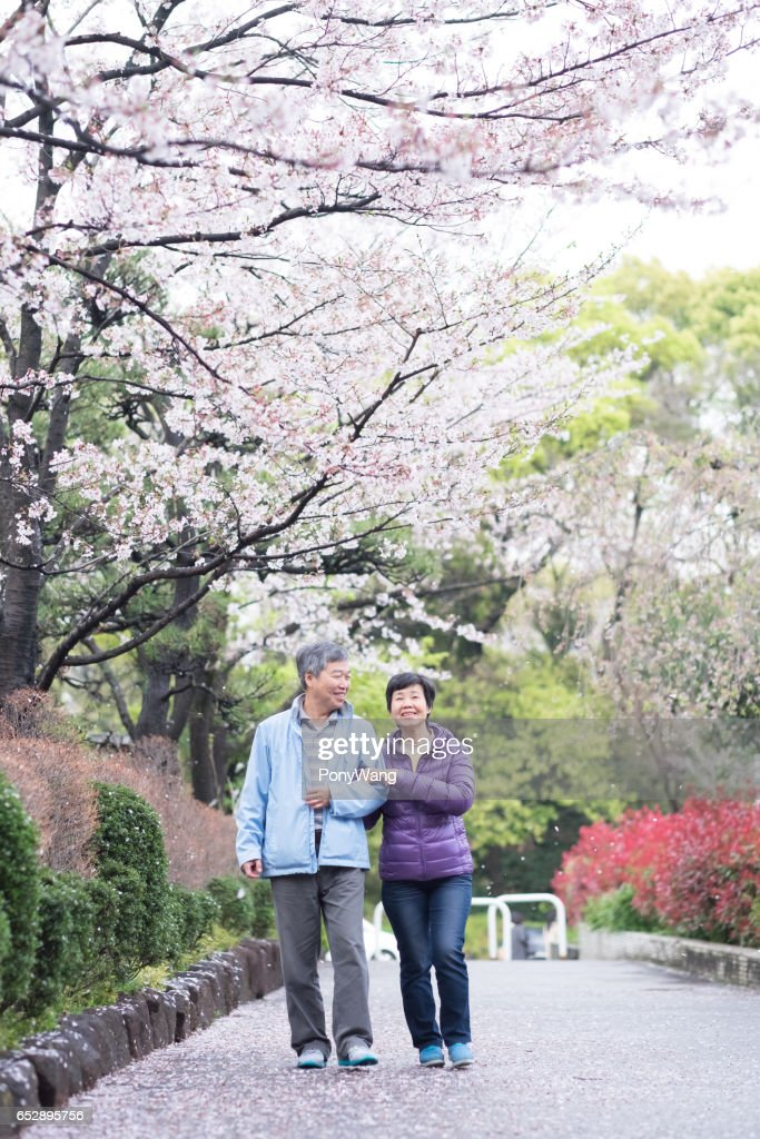 Old couple walk in park : Foto stock
