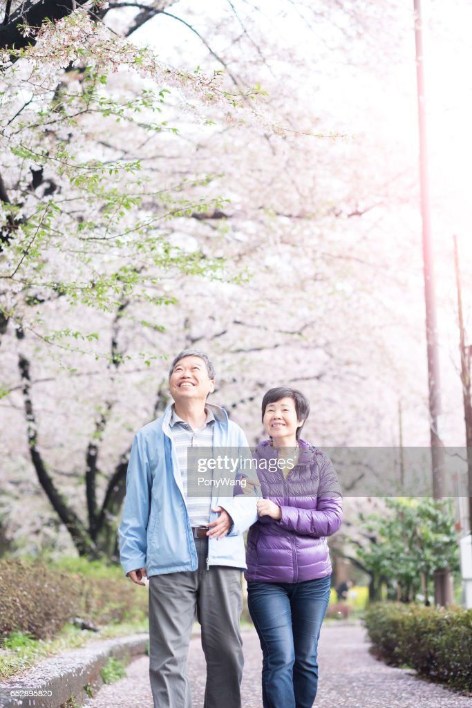 Old couple walk in park : Stock Photo