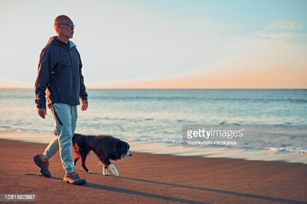 old dog and senior walking along the beach early in the morning - disruptaging foto e immagini stock