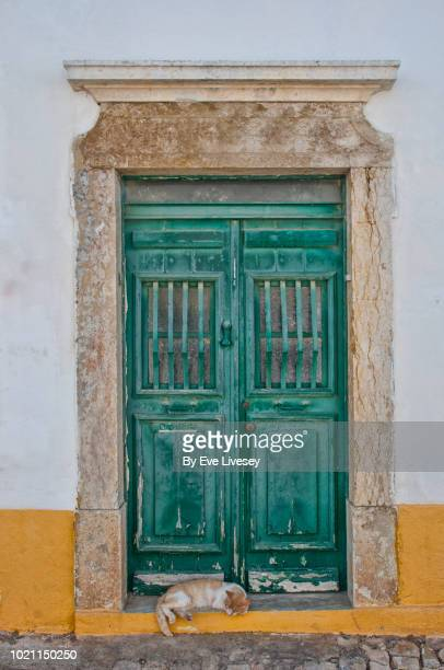 old door in faro town with cat sleeping on the doorstep - faro city portugal stock photos and pictures