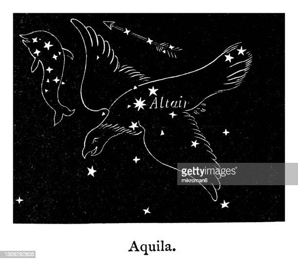 old engraved illustration of astronomy, aquila constellation - symbol stock pictures, royalty-free photos & images