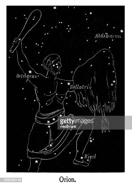 old engraved illustration of astronomy, orion constellation - belt stock pictures, royalty-free photos & images