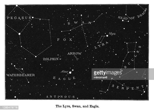 old engraved illustration of astronomy - the heavens on the horizon of london. the lyre, swan and eagle - astronomy stock pictures, royalty-free photos & images