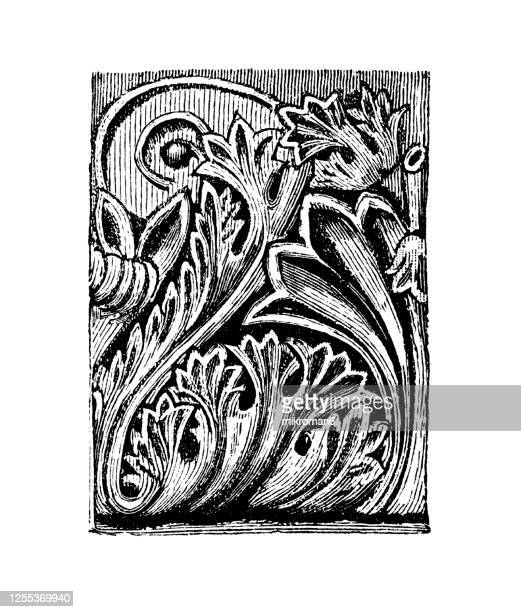 old engraved illustration of decorative floral ornaments, acanthus (ornament) - medieval stock pictures, royalty-free photos & images