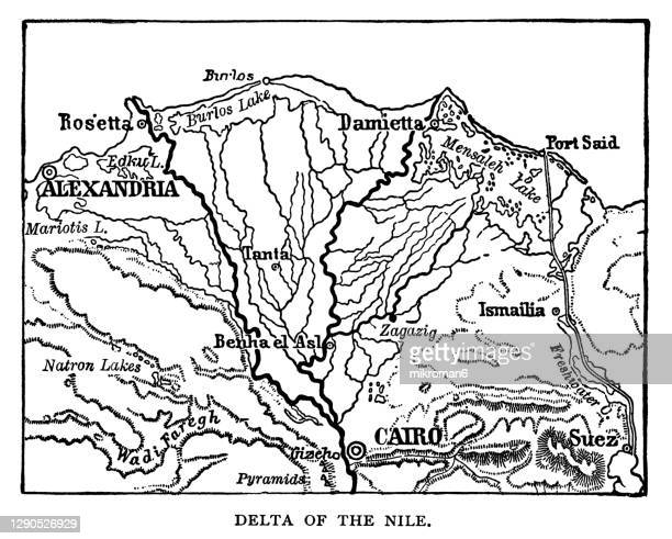 old engraved illustration of delta of the nile, egypt - alexandria stock pictures, royalty-free photos & images