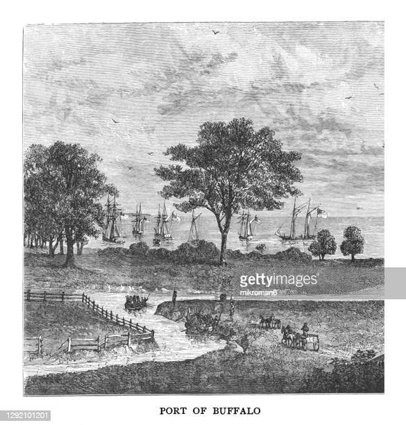old engraved illustration of port of buffalo on lake erie, canada in 1815 - buffalo new york state stock pictures, royalty-free photos & images