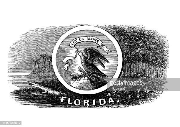 old engraved illustration of seal of florida us state, united states of america (usa) - florida us state stock pictures, royalty-free photos & images