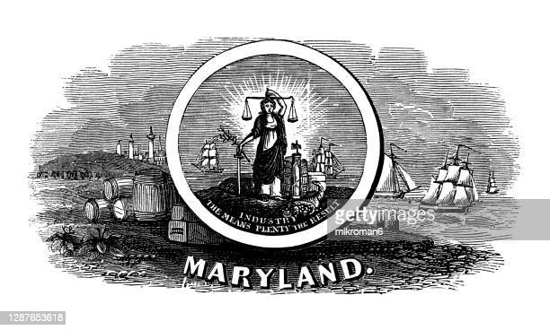 old engraved illustration of seal of maryland us state, united states of america (usa) - maryland us state stock pictures, royalty-free photos & images