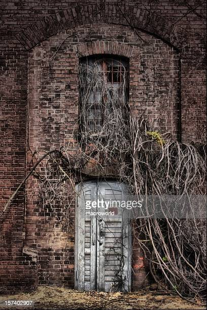 old entrance - magic doors stock pictures, royalty-free photos & images