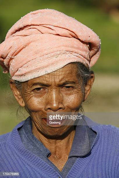 Old farmer Sedimen Indonesia
