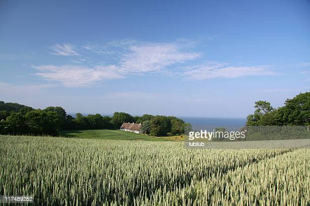 Old farmhouse and beautiful landscape in southern Jutland, Denmark