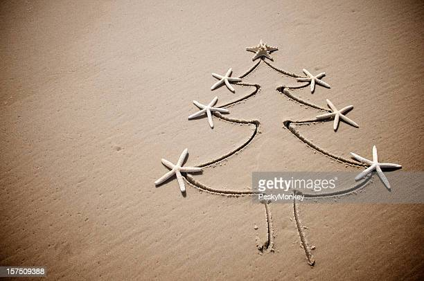 Old Fashioned Christmas Tree in Sand w Starfish