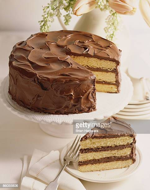 old fashioned layer cake with chocolate frosting - sponge cake stock pictures, royalty-free photos & images