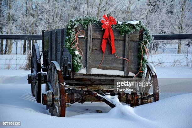 old- fashioned wooden cart with christmas decorations standing in snow, alberta, canada - country christmas stock pictures, royalty-free photos & images