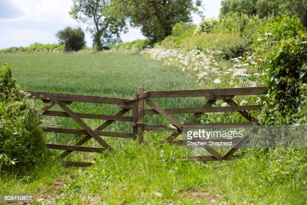 Old fence and gate at the entrance to a rural field.