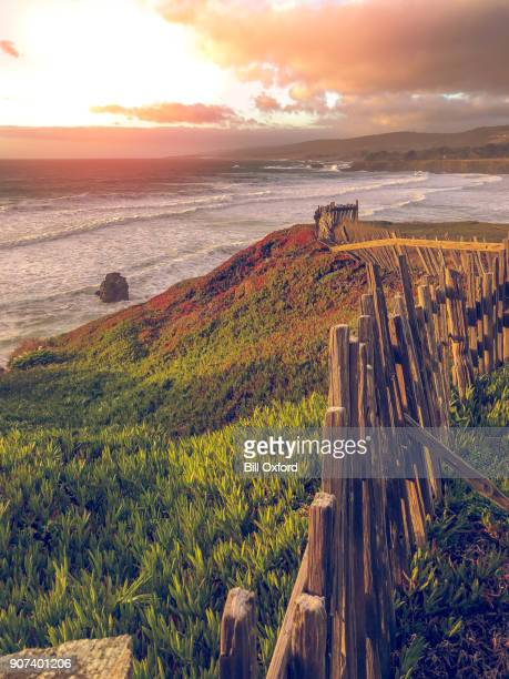 old fence by pacific ocean - sonoma county stock pictures, royalty-free photos & images