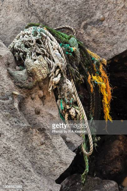 old fishing ropes trapped between rocks on welsh beach - vertical stock pictures, royalty-free photos & images