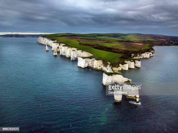 old harry - south australia stock photos and pictures
