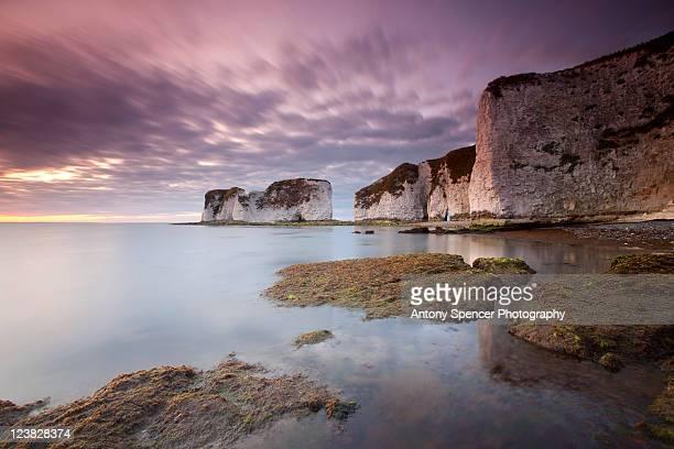 old harry rocks - 英国 ドーセット ストックフォトと画像