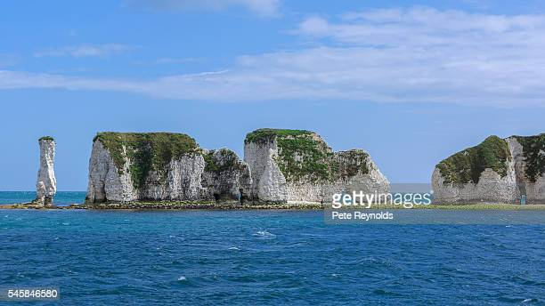 old harry rocks - jurassic coast stock pictures, royalty-free photos & images