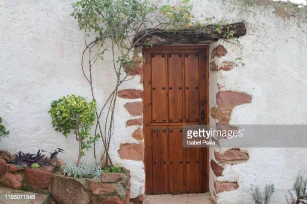 old house facade with climbing plant - cena não urbana imagens e fotografias de stock