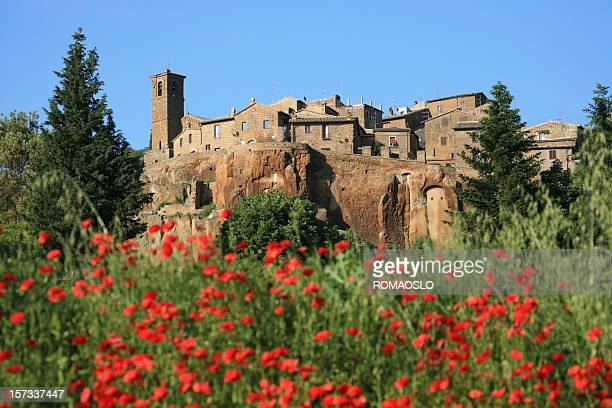 old houses and poppies in orvieto, umbria italy - orvieto stock pictures, royalty-free photos & images