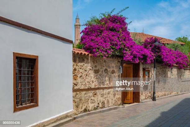 Old Houses with bougainvilleas in Kaleici old town of Antalya, Southern Turkey.