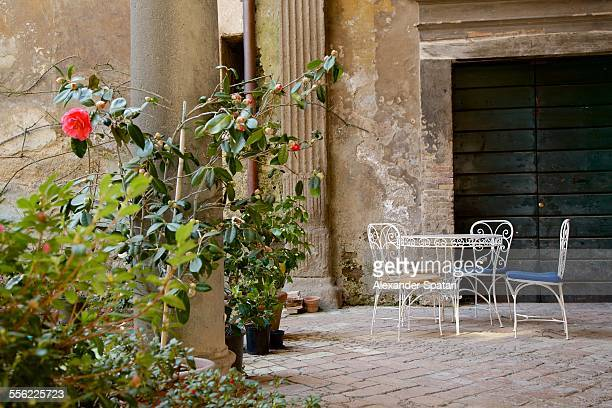 Old inner courtyard with roses in Orvieto, Italy