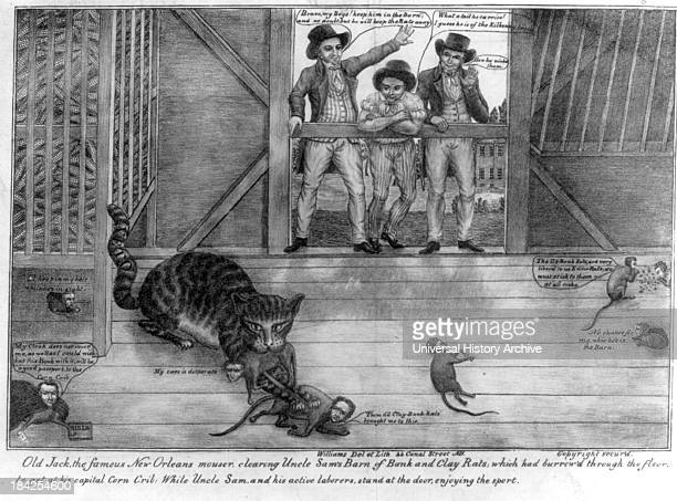 Old Jack the famous New Orleans mouser clearing Uncle Sam's barn of bank and Clay rats by Michael Williams circa 1832 Lithograph print on wove paper...