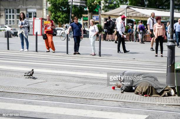 velha senhora implorando na zona turística de budapeste, durante o dia de verão - hungria - fotografias e filmes do acervo