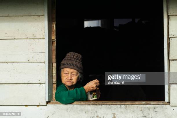 old lady from penan's tribe enjoying evening moment at bario. - shaifulzamri stock-fotos und bilder
