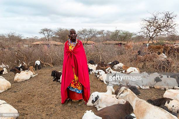 Old Maasai woman with traditional jewelry among her goats. Kenya.