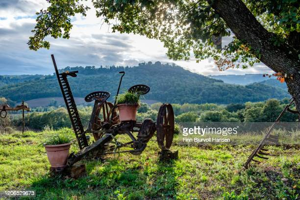 old machinery for agriculture in a garden - finn bjurvoll stock pictures, royalty-free photos & images