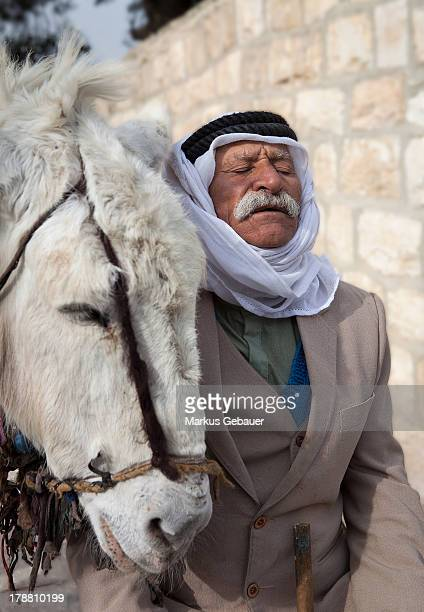 CONTENT] Old man and his donkey waiting for the first tourist group to arrive