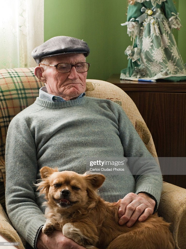 old man sitting on armchair with small dog on lap stock photo