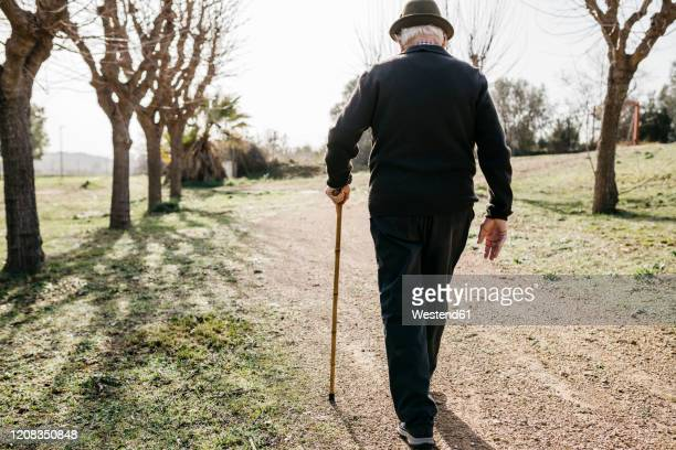 old man walking in winter park, leaning on his acne - alertness stock pictures, royalty-free photos & images