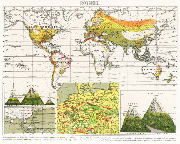 Old map of Distribution areas of the most important crops on Earth