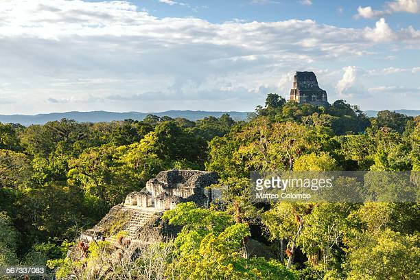 Old mayan temples of Tikal, Guatemala