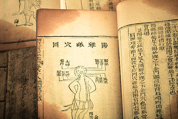research paper on ancient china Open document below is an essay on ancient china from anti essays, your source for research papers, essays, and term paper examples.
