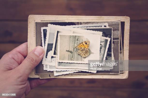 old memories - photo album stock photos and pictures