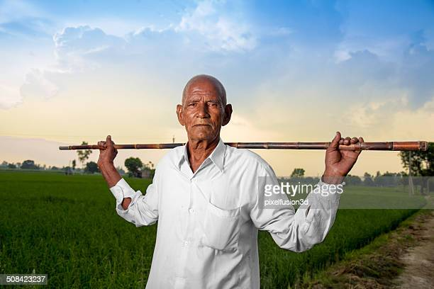 old men standing in green field holding his walking stick - haryana stock pictures, royalty-free photos & images