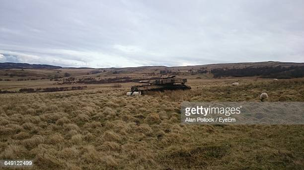 Old Military Tank On Grassy Field Against Sky At Northumberland National Park,